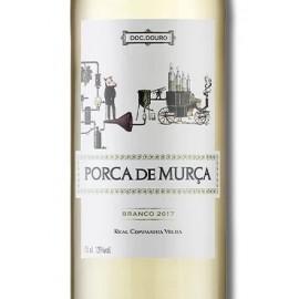 PORCA DE MURÇA BRANCO